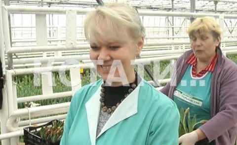 Огурцы сменили на тюльпаны — совхозы готовятся к международному женскому дню