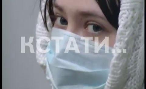 Смертельная инфекция — число погибших от свиного гриппа увеличилось до 7 человек