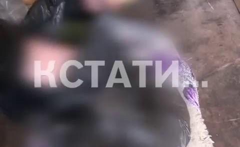 Сотрудники полиции провели рейд по рынкам Нижнего Новгорода