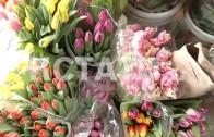Цветочное разнообразие радует нижегородцев в преддверии 8 марта