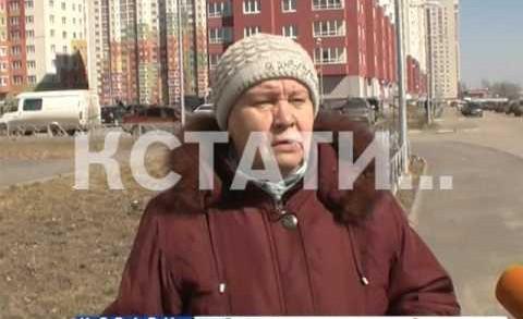 Грызуны атакуют — полчища крыс напали на Советский район