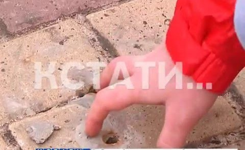 Нижегородское ГУВД обворовали самые наглые жулики города