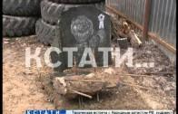Стихийное кладбище домашних животных убрали из заповедного леса