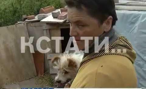 Зоозащитница превратила свой питомник в пыточную для животных