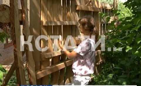 Методы мусорных королей взяли вооружение застройщики — в садах начали выращивать жилые дома