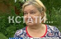 Пуховый платок аллергенов накрыл Нижний Новгород