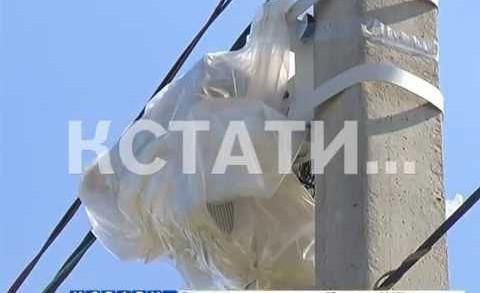 Хулиганский анти-радар — в Выксунском районе дорожные камеры пали жертвой вандалов