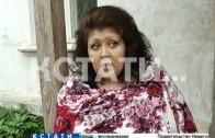 Истребитель домашних животных появился в Балахнинском районе