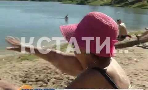 Парящий народный избранник — депутат Дзержинской думы превратил местные пляжи в аэродром