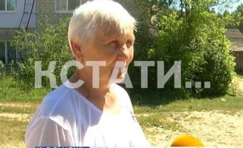 В Вачском районе на озере утонул маленький ребенок.