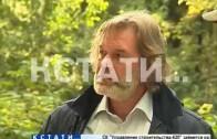 Борьбу с недобросовестными арендаторами начали в нижегородских лесах