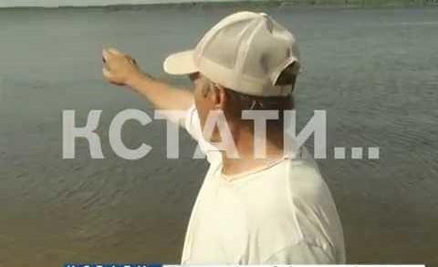 Невнимательный капитан на Волге раздавил 82-летнюю пловчиху