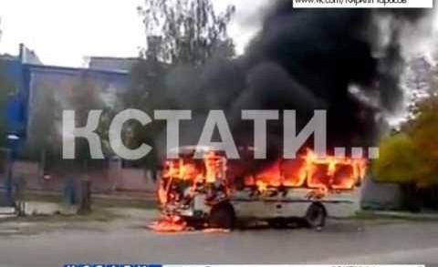 ЧП с участием общественного транспорта произошло на Бору