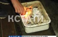 Еду на костре вынуждена готовить многодетная семья, которую лишили благ цивилизации