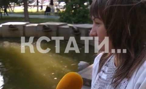 Из мест отдыха — в гниющие отхожие места превратились Нижегородские фонтаны