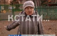 Грузовик-вредитель появился на Заволжских улицах.