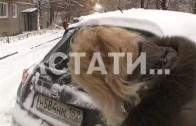 Треть месячной нормы осадков за одну ночь обрушилась на Нижний Новгород