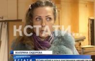 Зубастое дело в Балахнинском суде — там, судят хозяев собаки, покусавшей прохожего