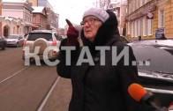 Первый официальный пешеходный переход для ослов появился в Нижнем Новгороде