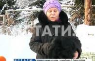 Собачьи киллеры за ночь из огнестрельного и холодного оружия уничтожили около десятка домашних собак