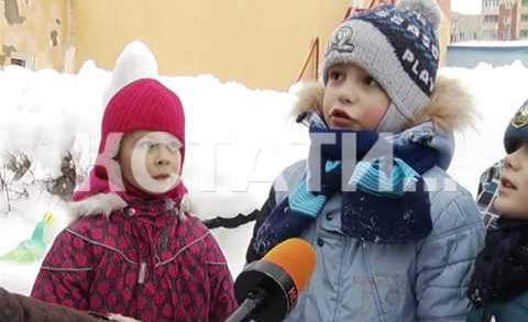 Зоопарк изо льда появился в Московском районе