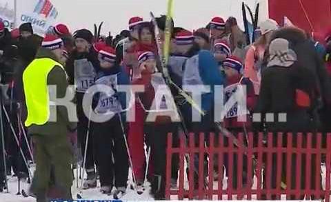 35 всероссийская лыжная гонка «Лыжня России 2017» стала самым многолюдным и массовым забегом