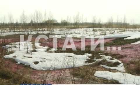Розовый снег выпал в Арзамасе по вине фабрики, по производству сантехнической продукции