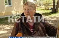 Сотни живых цыплят неизвестные выбросили в овраг в Сормовском районе