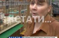 Две сотни животных, живущих в частном доме сделали жизнь соседей невыносимой