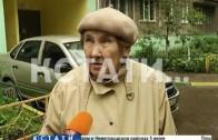 Газоны в Сормовском районе сегодня освобождали от незаконных захватчиков