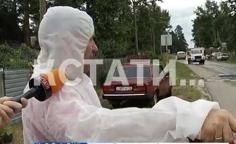 Очаг африканской чумы выявлен в Володарском районе