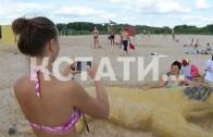 Сафари на павловском пляже — песчаные крокодилы, лошади и пауки появились на берегу Оки