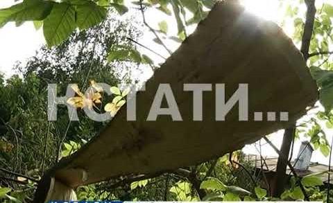 Дворник, спиливший дерево по просьбе жителей, оказался в больнице