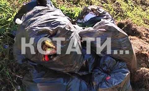 Вид на Стрелку через свалку — улицу Рождественскую завалили убранным с городских улиц мусором