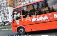 Транспорт в законе — в нижегородской маршрутке появился «авторитетный» пассажир