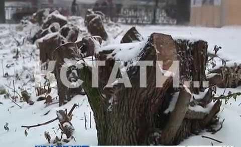 Горьковские обрезки — практически апокалиптический вид приняла пл. Горького