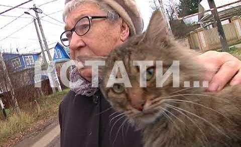 Лже-врачи появились в Нижнем Новгороде