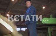 Нижегородская область станет столицей льна