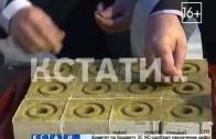 Овощное производство по новой технологии открыли в Нижнем Новгороде