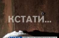 Боевик, готовивший теракт со взрывчаткой, ликвидирован в Нижнем Новгороде