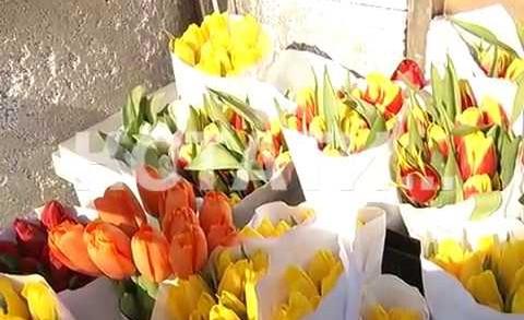 Цветочный ажиотаж в Нижнем Новгороде