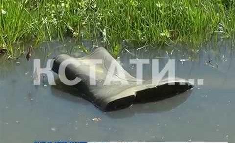 Фекальный затон — сады в Кстовском районе затопило канализационными водами