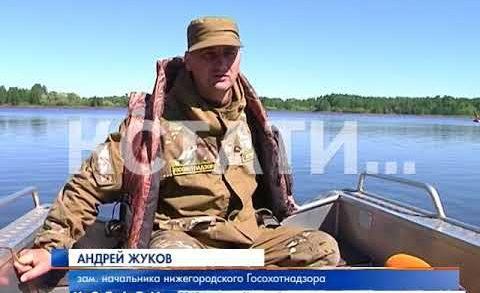 Ловили браконьеров, а поймали пенсионеров — операция «Нерест» на Волге
