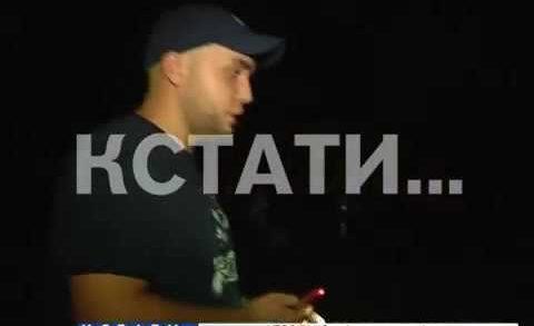 Американские тараканы заполонили теплотрассу в Московском районе