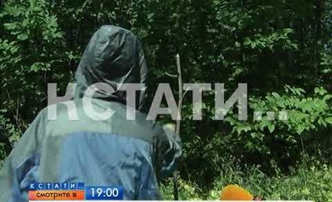 АНОНС: Птицелов-садист выявлен в Нижнем Новгороде