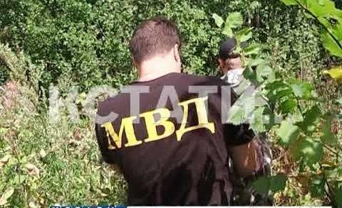 Часть волонтеров, спасателей и военных прекратила поиски пропавшей Маши Ложкаревой