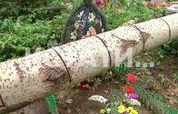 Стихийный нокаут — деревья, упавшие 3 месяца назад на захоронения, лежат там до сих пор