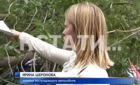 Ураганная халатность разбила автомобили в Приокском районе