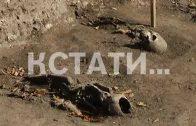 В Нижегородском кремле обнаружено захоронение 14 века