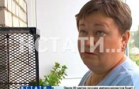В Заволжье женщина выбросила соседского кота с 6 этажа